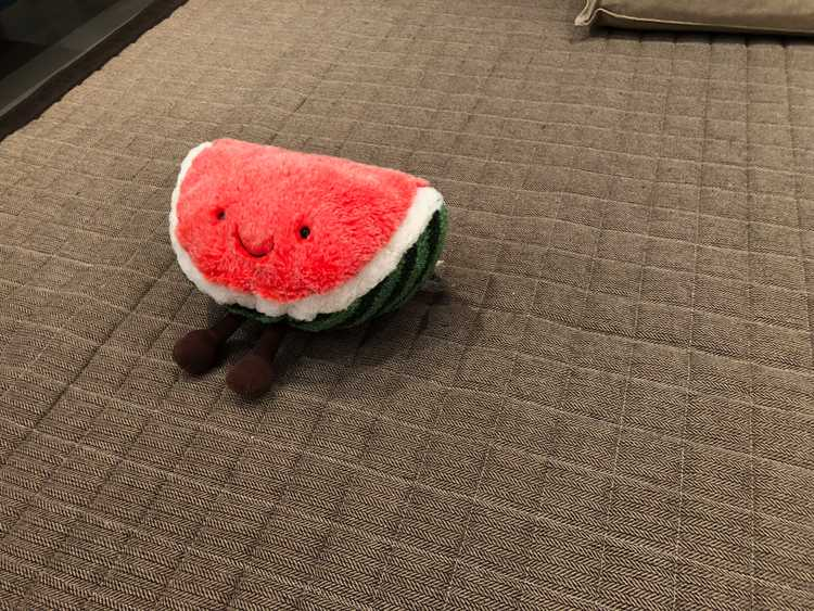 watermelon plushie melonie nick ang blog