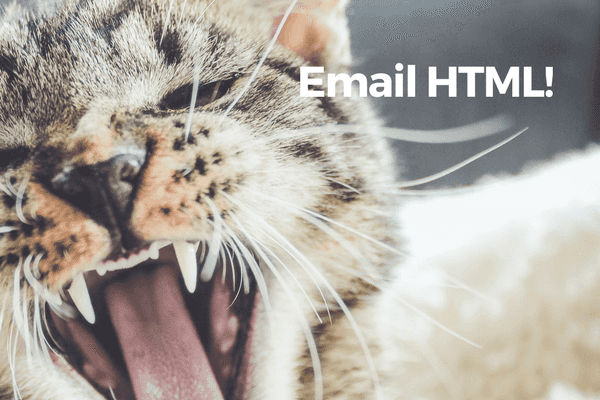 i hate email html banner with a cat with mouth open wide looking unhappy